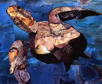 Sea Turtle by artist Marjorie Pesek. Giclee print, art prints, collage