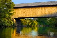 Hopkins Covered Bridge I