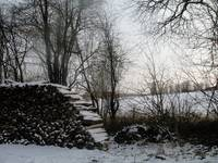 Winter woodpile
