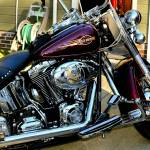 Harley Davidson Prints & Posters