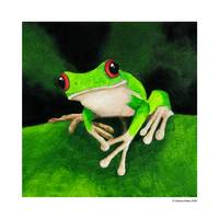 Green Tree Frog 4