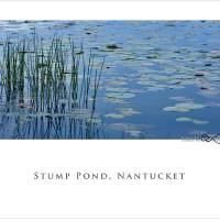 Nantucket Poster by George Riethof
