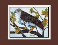 Graphic2Red-Tailed Hawk, poster
