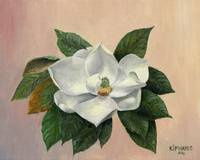 Joy-  Magnolia Series