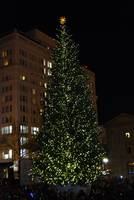 The Christmas Tree At Pioneer Courthouse Square
