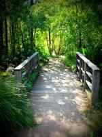 A Walk in the Park by Carol Groenen