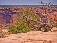 Canyon De Chelle National Monument-2