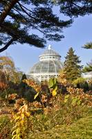 Autumn At the Conservatory