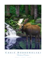 Wonders of Creation - Moose Series I