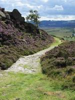 Burbage Path