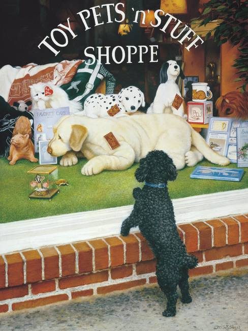 "The ""Toy"" Shopper"
