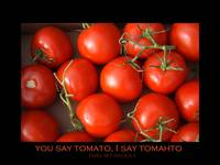 You say Tomato  I say Tomahto Poster