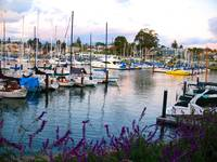 Pretty Boats - Santa Cruz, CA