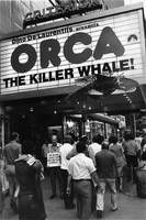 Homage, Gary Winogrand, Orca, New York City