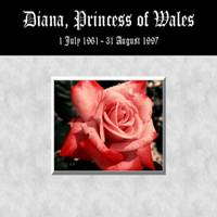 Diana,Princess of Wales Rose