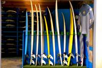 Murawai surf school