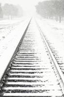 Rails into the Snowy Distance