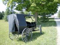 Mennonite Wagon