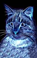 Digital Electric Kitty in Blue