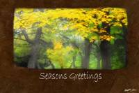 Ariana Autumn Leaves 7 Seasons Greetings