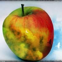 Fruit of Life Art Prints & Posters by Emin Sinanyan