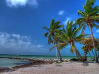 Key West Jetty