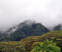 Manoa Valley In Oahu