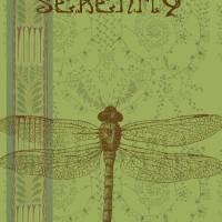 Serenity by Ricki Mountain