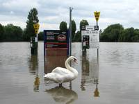 Pay & Display, Stratford-upon-Avon