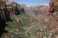 Zion National Park 5