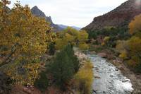 The Virgin River , Zion National Park