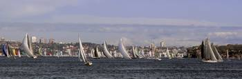 Sailboat Race, Sydney Harbour