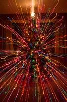 Wild Christmas Tree Abstract