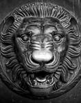 Lion's Head Ornament from the Parthenon, Nashville