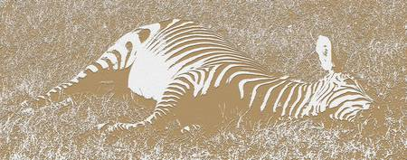 Let Sleeping Zebras Lie (Papercut)