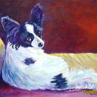 """Papillon Dog, Glamorous"" by wally_doodle"