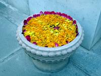 Hindu Flower Offering
