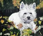 Westie in Fall Leaves