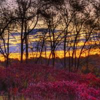 October Sunrise at The Inn at Cedar Falls by Jim Crotty