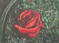 Portrait of a red rose bud