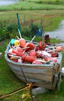 buoys in a boat by tracie brown