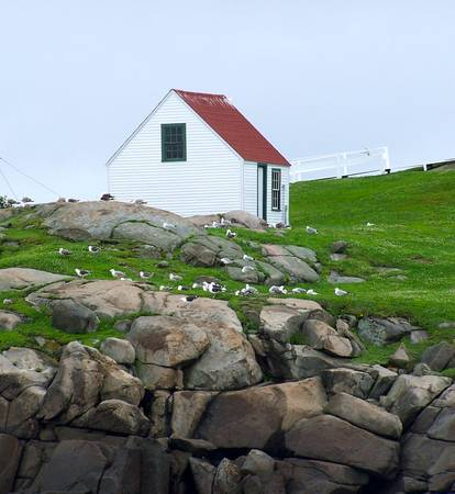nubble outhouse