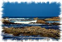 Monterey Coastline..Rocky Coves