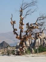 Turkish Pottery Tree