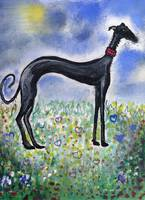Greyhound in Acrylics