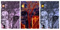 Another Brooklyn Night, NYC - Triptych