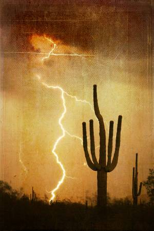 Arizona Saguaro Lightning Storm V