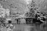 Rickety Wooden Bridge B&W
