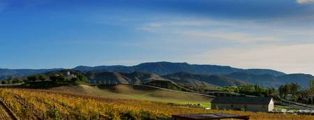 wine country#1