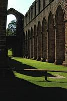 Fountains Abbey in Summer 7 by Priscilla Turner